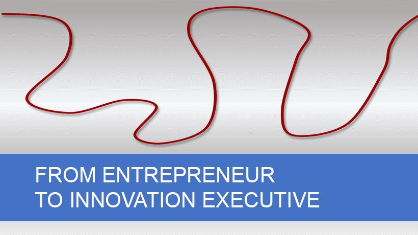 Innovation Entrepreneur